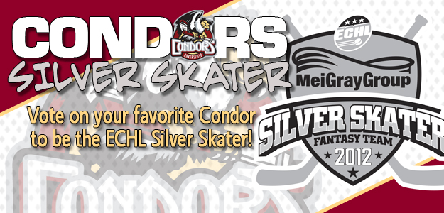 Voting is under way for the MeiGray ECHL Silver Skater Fantasy Team ba1f32b38